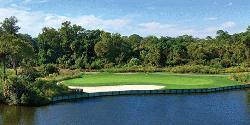 Palmetto Dunes Golf Course - Arthur Hills Course