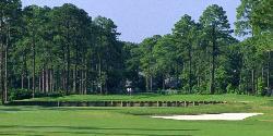 Palmetto Hall Plantation - Arthur Hills and Robert Cupp Courses