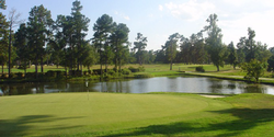 Shannon Greens Golf Club